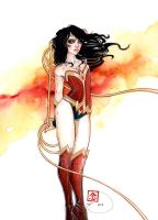 QUESTIONS THAT I'VE ANSWERED || WONDERWOMAN by retromortis