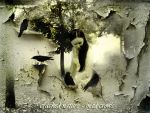 Cracked Nature-Mad Crows by djrana