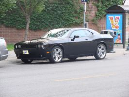 Dodge Challenger in Black by LittleBigDave