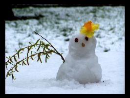 Snowman by Meados