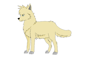 Wolf Anatomy Practice. by Fluffy-Bearr