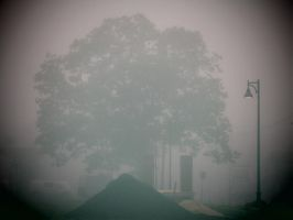 Tree In The Fog by FaultyStar15
