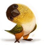Day 590. Caique Quickie by Cryptid-Creations