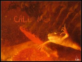 Call me by NEME5IS