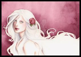 The White Rose by Achen089