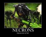 Necrons by AngryFlashlight