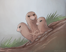 150+ project: dugtrio by edface