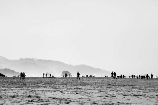 cannon beach by davidst123