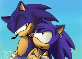 Sonic and Coby by SonicMaster23