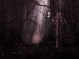 The Witch of Lost Bayou by MMSmith1777