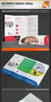Clean Multipurpose Corporate Trifold Templates by env1ro