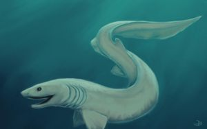 Frilled Shark by fait-Hunter
