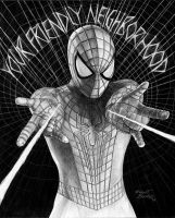 Spiderman2493x611 by Robert-Blancas