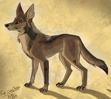 Treat: Coyote by Nothofagus-obliqua