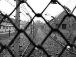 behind the fence.. by Ladan-cz