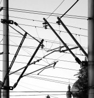 Wires by devibobas