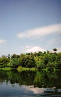 on the nile by grafick
