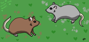 You must love rats! by Hollygoesmeow