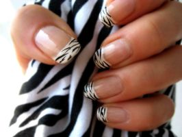 Zebra Nail Polish 3 by xzibitka