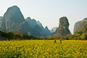 Yangshou, China by aloxey
