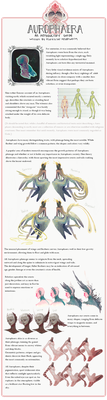 aurophaera introductory guide by Chaotic-Muffin