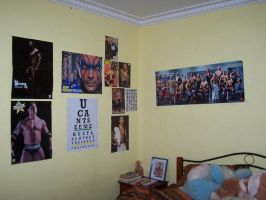 My Wrestling posters by slayer20