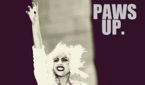 "Lady Gaga ""Paws Up"" Wallpaper by roobarbcrumble"