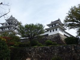 Gujo Hachiman Castle 3 by SHiNiGAMi-Xiii