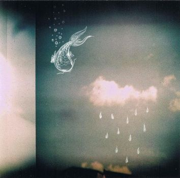 The rain cloud and the fish by Carouselhorses