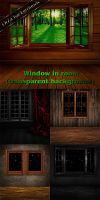 Window in room (transparent background) by DiZa-74