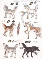 Native wolves and 1 horse ADOPTION .:CLOSED:. by Crazywolfs