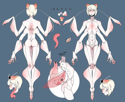 Venus reference sheet by VenusFlowerrr