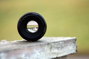 Nifty Fifty by Coltography