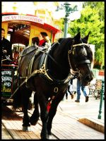 Horse in Main Street U.S.A. by OswaldGirl