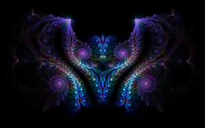 The Nautilus Butterfly by riverfox1