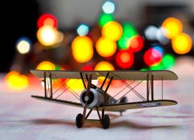 Bokeh Flight by sztewe
