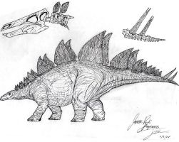 Stegosaurus by JBugallo