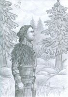 Reflections of Anders (Dragon Age) by polinaart1