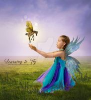 Learning to Fly by deathbycanon