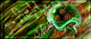Metroid Signature by Tymer