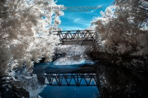 A Bridge To Somewhere by TabithaS-Photography