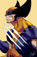 Wolverine 8 by ANGElsilvestre