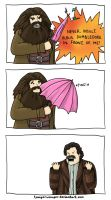 Woah Hagrid. Put down the umbrella, man. by TomperWomper