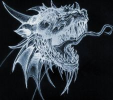Dragon by havoc200322