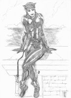 Catwoman 030311 by JeanSinclairArts