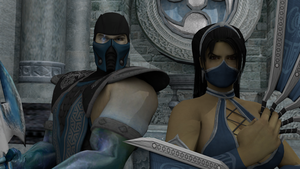 Pick your team: Kitana and Sub-Zero by Theonidan