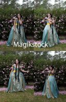 Princess set 3 by magikstock