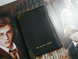 Journal de Tom Marvolo Riddle / Lord Voldemort by elodieland