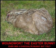 Woundwort the easter bunny by Ziblink