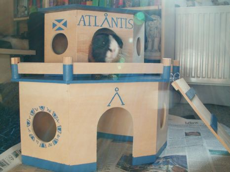 Atlantis for Guinea Pigs by Netreya